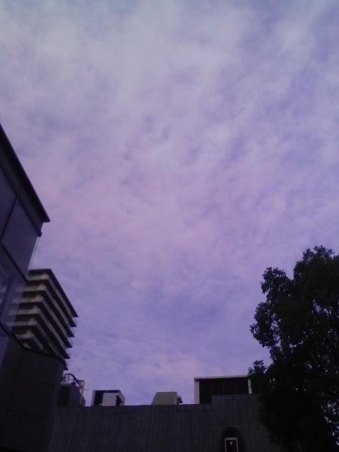 大阪市内、曇ってきました